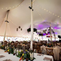 Pole Tent with Cafe Lighting