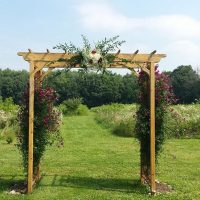 Natural Wood Arch